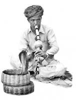 மகுடி வாசிப்பவர்