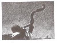 உயிர்த்தூம்பு